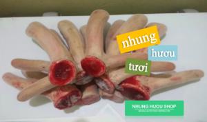 nhung-huou-co-tac-dung-gi