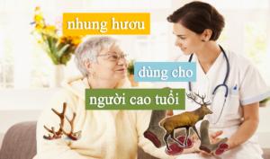 nhung hươu có tác dụng gì đối với người cao tuổi