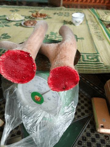 nhung hươu hcm