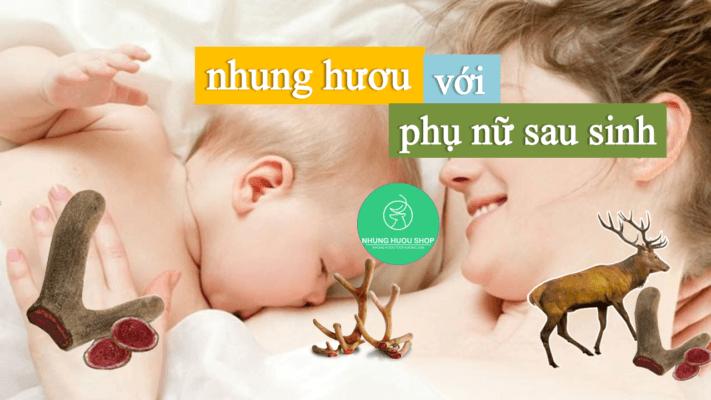 nhung hươu tốt cho phụ nữ sau khi sinh