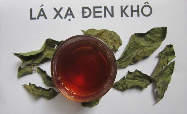 bài thuốc từ lá cây xạ đen